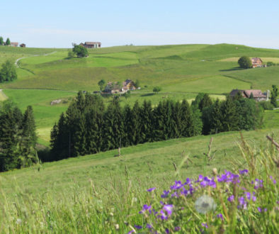 Leimensteig bei Schlatt Appenzell