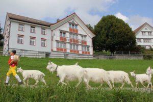 Appenzell Schlatt Hotel Zimmer 3 12 1024x683